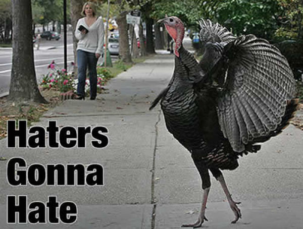 [Image: hater_gonna_hate_05.jpg]