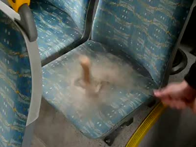 http://us.acidcow.com/pics/20120131/video/dirty_bus_seats.jpg